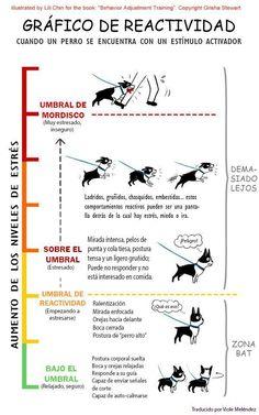 Gráfico de reactividad ante un estímulo activador  Chart reactivity when a dog is a stimulus trigger