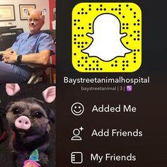 Coming Soon To SnapChat baystreetanimalhospital #baystreetanimalhospital #snapchat #vettechs #veterinarian #vetsnobiety #vettechweek #vetsofInstagram #dogsofinstagram