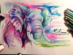 Water color elephant tattoos watercolor art, art drawings и Colorful Elephant, Elephant Art, Elephant Tattoos, Elephant Paintings, Elephant Drawings, Desenho Tattoo, Color Pencil Art, Colorful Pictures, Painting Inspiration