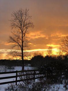 Funny Farm snowy sunset