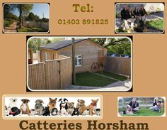 For more detail simply visit at: http://www.hammerpondkennels.co.uk/nav/kennels
