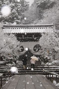 Komyo-ji temple in snow, Kyoto, Japan: photo by 92san