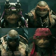 My favorite ninjas! Ninga Turtles, Ninja Turtles Movie, Teenage Mutant Ninja Turtles, Ninja Turtles 2014, Tmnt Girls, Leonardo Tmnt, Sr1, Tmnt 2012, Turtle Love