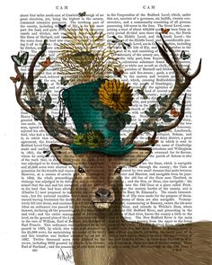 The Mad Hatter Deer Book Print