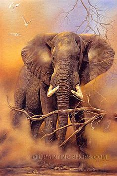 """Hand Painted Oil Painting Reproduction African Animal Elephant Portrait, Size: 36"""" x 48"""", $193. Url: http://www.oilpaintingshops.com/hand-painted-oil-painting-reproduction-african-animal-elephant-portrait-2982.html"""