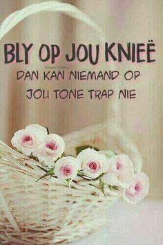 Op jou knieë in gebed Quotes About God, Inspiring Quotes About Life, Inspirational Quotes, Christian Messages, Christian Quotes, Prayer Verses, Bible Verses, Mom Prayers, Afrikaanse Quotes