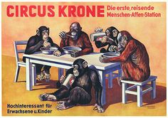 Circus Krone Human Travelling Monkeys 1938