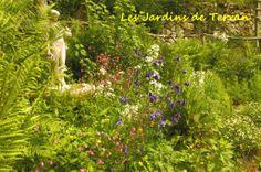Les jardins du terran Herbs, Plants, Gardens, Character Home, The Calm, Tourism, Photography, Herb, Plant