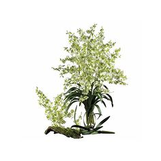Nearly Natural Home Indoor Decorative Tabletop Fancy Dancing Lady Set of 12 Green -- Click on the image for additional details.