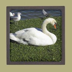 White Swan Premium Gift Boxes
