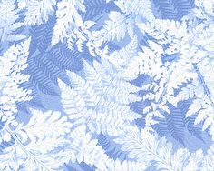 Ice - Winter Frost & Foliage - Periwinkle/Silver; #quilting, #fabric, #design