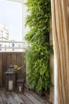 Um painel verde é uma ótima opção para quem gosta plantas e não tem espaço. Se colocado na parte lateral da sacada, ainda garante certa privacidade.  Foto: Beatriz Quinelato Arquitetura