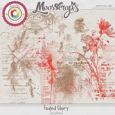 Faded Glory - brushes by Moosscrap's Designs