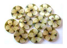 Shell 10 pulsanti ornamento di fiori sul green per di oritdotan