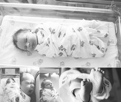gorgeous newborn hospital pics  colie james photography CO
