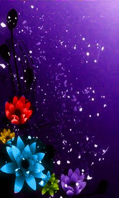 Hd flowers color nokia mobile wallpapers