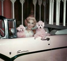Dolores Gray and her pink poodles in her pink Sunliner, 1955 Dolores Abernathy, Tony Winners, Cyd Charisse, Pink Poodle, Old Hollywood Stars, Chick Flicks, Pink Grey, Gray, Cursed Child