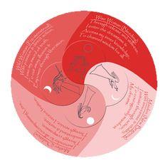 Centre of Moon Dial Mandala