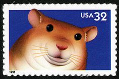 Hamster dance, anyone? This Postal Service issued this 32-cent Bright Eyes stamp on August 20, 1998.