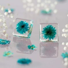 Cute Real Flower Earrings  Mentol blossom studs