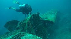 Diving from Honiara in the Solomon Islands, on some of the plane and ship wrecks. During the SPUMS conference. Ww2 Planes, Solomon Islands, Underwater, Diving, Scuba Diving, Under The Water