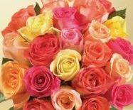 Send Flowers Online to Hyderabad through Winni