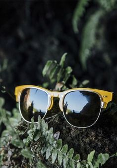 TOMS eyewear styles for summer.