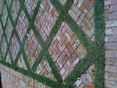 I don't know about ground cover , . . but mixing some slim bricks/different color might be a possibility.