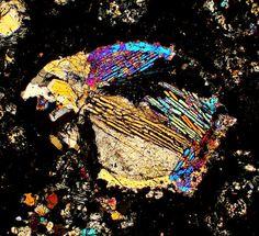 DAG 1040 meteorite thin section viewed through a polarizing microscope