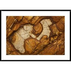 Global Gallery Volcanic Rock, Onawe, Banks Peninsula, Canterbury, New Zealand by Colin Monteath Framed Photographic Print Size: