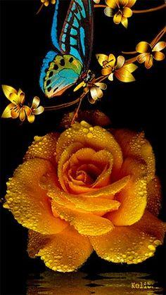 FaTiMa_Jada__Beauty Is Worth A Gif