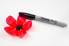 DIY Recycled Plastic Bottle Poppy Flowers