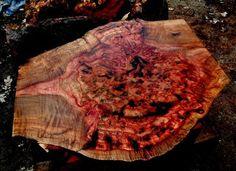 The Burl Hunter #7: Crazy Color Madrone Burl - by OregonBurls @ LumberJocks.com ~ woodworking community