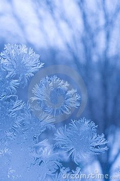 Frost Pattern On A Window Glass Stock Photo - Image of frostwork, abstract: 18687792 Snow Scenes, Winter Scenes, Ice Aesthetic, Frosted Glass Window, Winter Magic, Sunset Wallpaper, Winter Beauty, Old Barns, Patterns In Nature