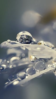 photo black and white close up water drops..❥❥ source