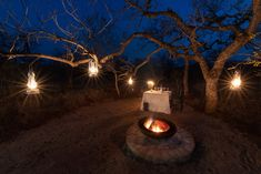 Romantic dinner for two under African stars Romantic Dinner For Two, Romantic Dinners, Safari Decorations, Outdoor Dining, Outdoor Decor, Curtains With Blinds, Outdoor Settings, African Safari, Interior Design
