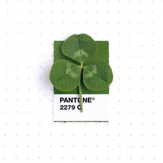 On the Creative Market Blog - This Designer Matches Teeny Objects with Pantone Colors and We Love It