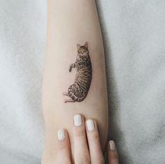 오잉! . Mini Cat tattoo . . #tattoo#tattooist#tattooistsol#솔타투#lettering#soltattoo#color#colortattoo#꽃타투#flowertattoo#반려묘타투#equilattera#cattattoo#타투#솔타투#타투이스트솔