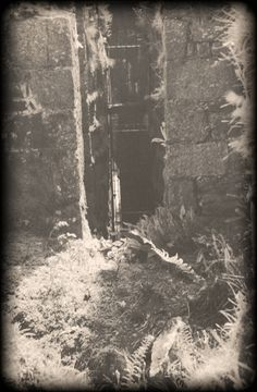 TIN MINE | Cornwall: Shaft entrance     ✫ღ⊰n