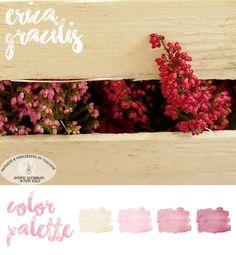 Erica Gracilis - Color Palette of 17/10/2015 ~ Grafic Scribbles