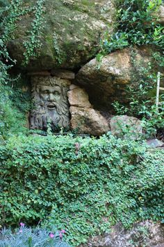 Cant' see the water, but you know it's here.  Ferns and creeping plants, stone, an intriguing face... CS