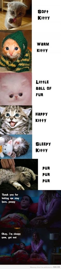 Will You Sing Soft Kitty to Me? ~ Big Bang Theory