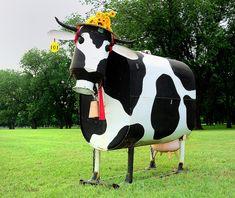 Cow art/sculpture
