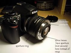 Reverse Lens Macro: How to use it as a Great Learning Tool