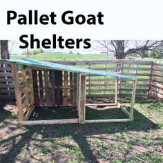 Goat house for winter protection. How to build a goat shelter using pallets. An easy and cost effective way to use easy to find material to make great winter shelters for your goats. Keeping Goats, Raising Goats, Small Goat, Small Farm, Goat Shed, Goat Shelter, Goat Barn, Boer Goats, Farm Plans