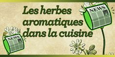 Les herbes aromatiques dans la cuisine Ricotta, Food And Drink, Yummy Food, Bread, Coin, Refuge, Nutrition, Gardens, Herbs