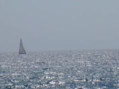 """""""-Voi amate il mare, capitano?  -Sì! L'amo! Il mare è tutto. Copre i sette decimi del globo terrestre. Il suo respiro è puro e sano. È l'immenso deserto dove l'uomo non è mai solo, poiché sente fremere la vita accanto a sé."""" Jules Verne"""