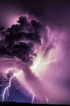 purple-mood-pictures-from-the-most-mysterious-color-27