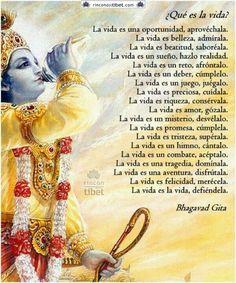 Las 10 Mejores Imágenes De Krishna Frases Espirituales