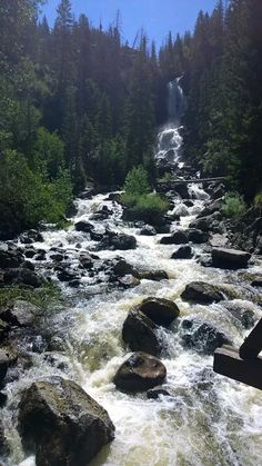 Fish Creek Falls in Steamboat Springs, CO. A must see when visiting!